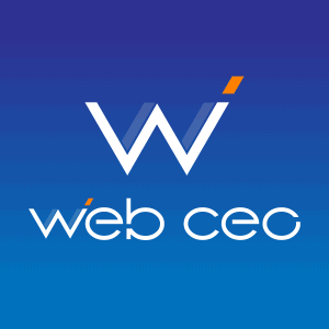 Web CEO Review
