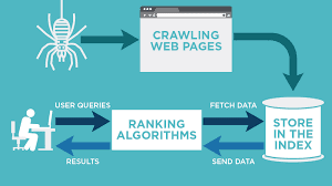 How Google Crawls A Web Page Review • ToolsWeLike